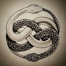 Snake eating itself tattoo google search tattoo ideas for Snake eating itself tattoo