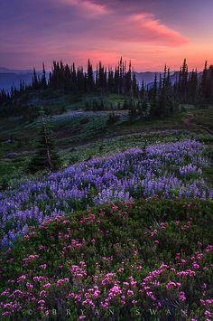 Pastel Panorama | Flickr - Photo Sharing!