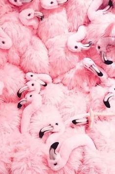 45 ideas for wallpaper pink pastel flamingo Eyes Wallpaper, Wallpaper Samsung, Pink Wallpaper, Pink Love, Pretty In Pink, Wallpapers Rosa, Iphone Wallpapers, Pastel Pink, Pink Purple