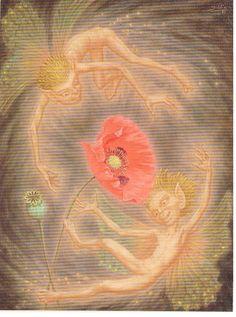 Johfra  Bosschart - Dance of the Red Poppy