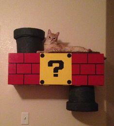 Homemade Super Mario Bros Cat Climber | MAKE