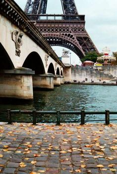 I love taking long walks along the Seine river.