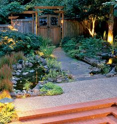 gorgeous backyard lighting