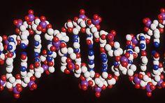 Epigenetics: How to alter your genes