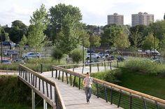 The_Hive_Worcester_Library-Landscape-Grant_Associates-06 « Landscape Architecture Works   Landezine