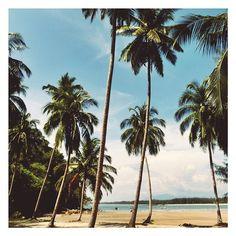 Our pristine beach <3