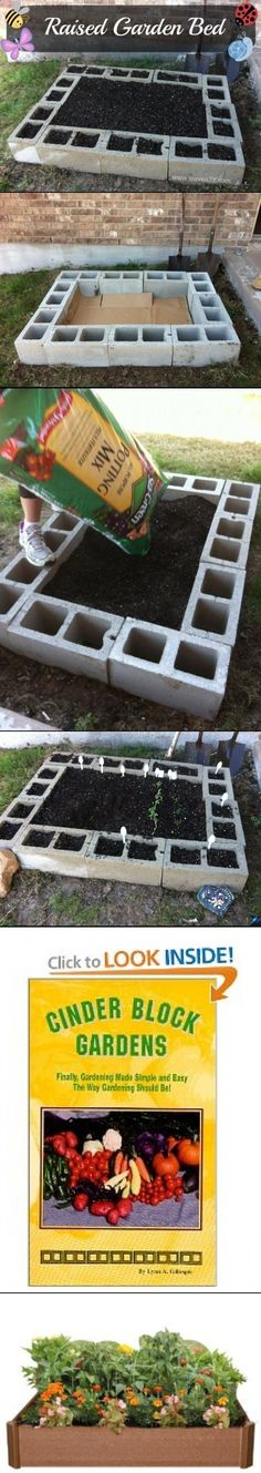 Raised Garden bed with cinder blocks. I'd make the footprint of the cardboard bigger than the blocks and lay it down first, then the blocks, then the dirt, then mulch around the outside, to keep the weeds down.