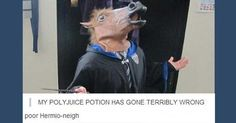 The Harry Potter fandom is strong on Tumblr! Check out the best posts in this funny Smosh gallery