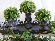 For my planters in the driveway
