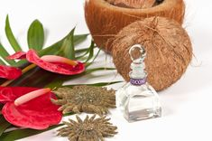 Natural Health News and Wellness Tips: Top 10 Natural Health Remedies of Coconut Oil
