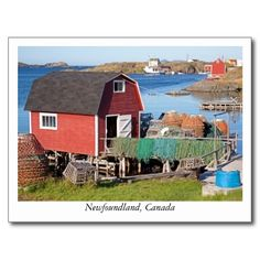 Shop Postcard from Newfoundland, Canada created by PhotoFuntesia. Art Prints For Home, Prints For Sale, Fine Art Prints, Fine Art Photography, Travel Photography, Newfoundland Canada, Canada Travel, Postcard Size, Travel Pictures