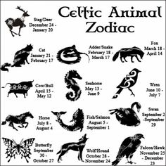 Celtic Animal Zodiacs