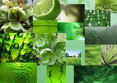 Google Image Result for http://plainyjane.files.wordpress.com/2010/11/green-mood.jpg