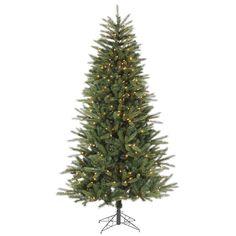 7' Vickerman B106772 Bradford Fir - Green Christmas Tree
