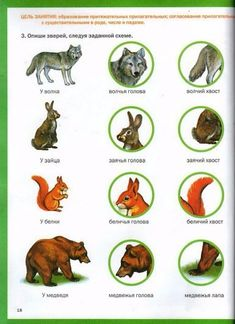 мир животных-20 (385x530, 181Kb) Forest Animals, Health, Speech Language Therapy, Blue Prints, Learn Russian, Health Care, Woodland Creatures, Salud