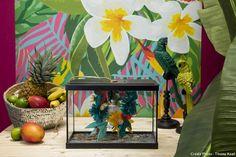 la lampe tropicale ou comment transformer un aquarium en lampe avec décor végétal.