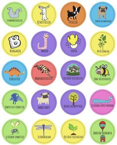 IMG_9815 Early Childhood Education, Kindergarten, Preschool, Diagram, Classroom, Positivity, Teaching, Inspiration, Peda