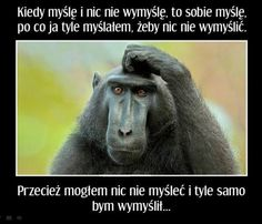 Małpa i myślenie
