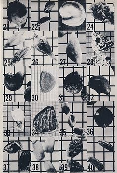 Seed Pictorial, Agriculture Series.