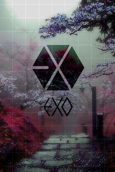 Picsart, Lightstick Exo, L Wallpaper, Exo Album, Exo Lockscreen, Exo Fan, Exo Ot12, Bts And Exo, Kyungsoo
