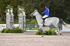 Nicole Bellisimo and Bugatti VDL at the Central Park Horse Show. #horses #horseshows #NYC #newyorkcity