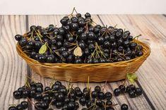 Marja-aronia on kenties Suomen terveellisin marja. Preserves, Blackberry, Berries, Food And Drink, Fruit, Finland, Smoothie, Blackberries, Berry Fruits