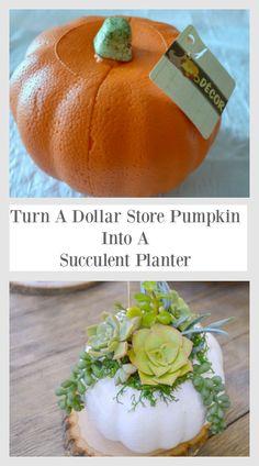 DIY Pumpkin Succulent Planter – My Uncommon Slice of Suburbia – Diy Garden İdeas Pumpkin Planter, Diy Pumpkin, Pumpkin Crafts, Fall Crafts, Decor Crafts, Diy Crafts, Dollar Tree Pumpkins, Plastic Pumpkins, Dollar Tree Crafts