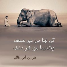 Image discovered by ŽنŽنْ. Find images and videos about rule, Sayings and Imam Ali on We Heart It - the app to get lost in what you love. Imam Ali Quotes, Arabic Quotes, Positive Attitude, Attitude Quotes, Words Quotes, Qoutes, Sayings, Funny French, Black Quotes