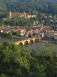 Heidelberg - Loved this view!  Max Weber lived in one of these houses on the river.