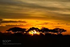 African Sunset - African Sunset Amboseli National Park Kenya East Africa