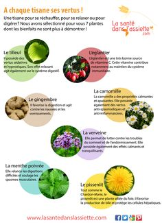 Fiche pratique - A chaque tisane ses vertus ! Health And Beauty, Health And Wellness, Sante Bio, Happy Vegan, Aromatic Herbs, Medicinal Plants, Diet And Nutrition, Health Remedies, Natural Health