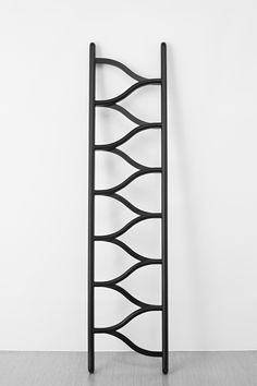 ladder by clemens auer. photo (c) leonhard hilzensauer