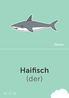 Haifisch #CardFly #flience #animals #german #education #flashcard #language