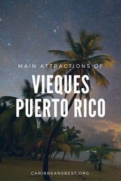 Here are fun things to do if you are in Vieques, Puerto Rico. Types Of Photography, Candid Photography, Stuff To Do, Things To Do, Puerto Rico Trip, Close Up Portraits, Photo Story, Florida Beaches, Humor