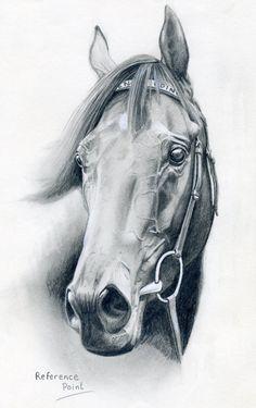 Horse by RussianCandyCane on DeviantArt