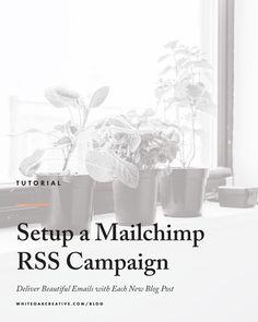 How to Setup a Mailchimp RSS Campaign