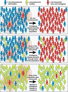 It is important for a community to have a herd immunity because it will reduce the amount of people from getting sick and prevent the disease from spreading.