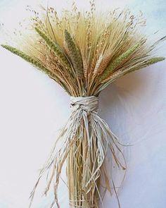 Mixed Grain Wheat Bundle. Martha Stewart wheat centerpiece look alike from drieddecor.com
