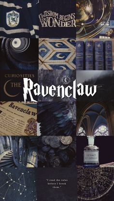 Ideas Funny Harry Potter Houses Ravenclaw For 2019 Harry Potter Tumblr, Harry Potter World, Images Harry Potter, Arte Do Harry Potter, Harry James Potter, Harry Potter Quotes, Harry Potter Universal, Harry Potter Fandom, Nargles Harry Potter