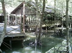 Barn Thai Restaurant, Langkawi.  Set deep within the mangrove of Langkawi, the restaurant is accessible only by a 450 meters wooden walkway.