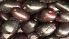 Jambul Fruit