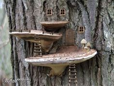 Fairy houses with tree fungi for porches!