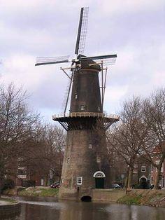 Netherlands Schiedam Schiedamsedijk rechtsaf. Plantsoen onderhoud in deze omgeving van 1963 tot 1986