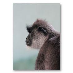 Wild Animal Gibbon Monkey Profile Portrait Business Cards http://www.zazzle.com/wild_animal_gibbon_monkey_profile_portrait-240996539194321179?rf=238835258815790439&tc=gbcpin1