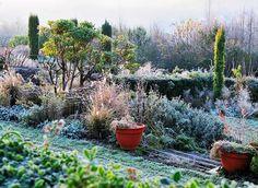 www.rustica.fr - Que planter en février au jardin