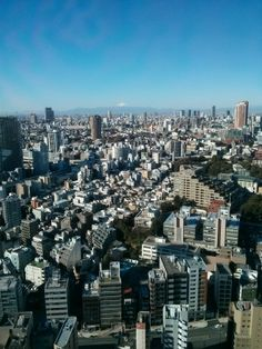Tokyo with the view of the fuji