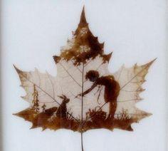 I did a lot of work using Liquid Light..... way cool stuff!!...........liquid light on leaf