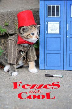 Fezzes are Cool. Tiny Kittens Dressed As Iconic Fantasy Characters Are The Best TinyKittens. Here, the Eleventh Doctor, Doctor Who