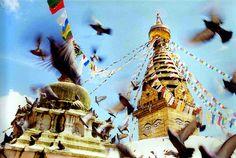 Katmandu.  Swayambhunath Stupa, Kathmandu, Nepal by Saud A Faisal, via Flickr