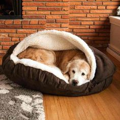 Luxury Cozy Cave Dog Beds - Beds, Blankets, and Furniture- Bed Posh Puppy BoutiqueGet your pooch to stop climbing on the furniture once and for all by purchasing the dog cave bed. This oversized and insanely comfortable bed completely envelops Rex so Cozy Cave Dog Bed, Dog Cave, Cozy Bed, Chien Jack Russel, Animals And Pets, Cute Animals, Dog Car Seats, Pet Beds, Dog Houses